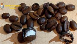 Thủ đoạn tinh vi nhét cocaine trong hạt cà phê
