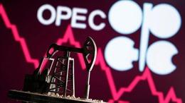 OPEC đa dạng hóa danh mục xuất khẩu