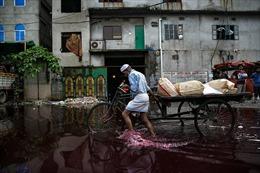Câu chuyện về những dòng sông 'nhuộm đen' tại châu Á