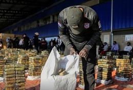 Paraguay bắt giữ số cocaine trị giá 500 triệu USD giấu kèm than đá