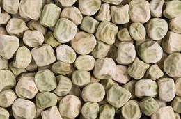 'Siêu đậu nhăn' giúp giảm rủi ro tiểu đường tuýp 2