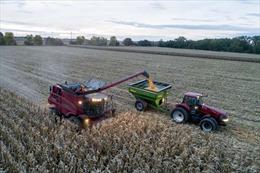 Quan hệ nông nghiệp Mỹ-Trung thăng hoa bất chấp chiến tranh thương mại