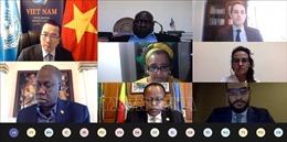 Việt Nam đánh giá cao diễn biến tích cực tại Nam Sudan