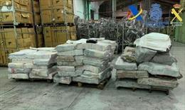 Tây Ban Nha tịch thu 2 tấn cocaine giấu trong than đá