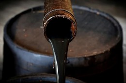 Giá dầu tăng khiến căng thẳng cũ của OPEC tái xuất