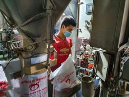 Bắc Giang: Khôi phục sản xuất, công nhân được chăm lo chu đáo