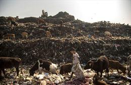 Một ngày của cậu bé nhặt rác tại Ấn Độ
