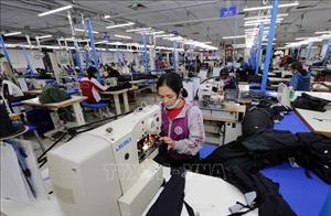 Năm 2019, xuất khẩu dệt may ước tăng 7,55%