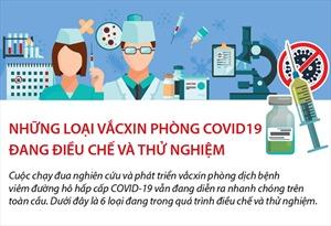 Những loại vắcxin phòng COVID-19 đang điều chế và thử nghiệm