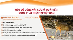 Một số động vật cực kỳ quý hiếm được phát hiện tại Việt Nam