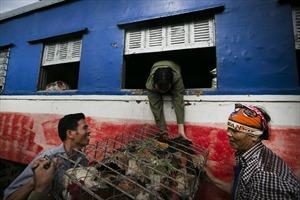 Duy trì tuyến đường sắt Yên Viên - Hạ Long: Bài toán cần lời giải
