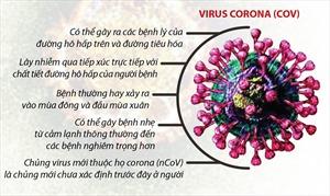 Phòng, chống dịch bệnh viêm phổi cấp do chủng virus corona mới