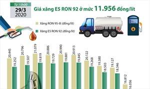 Giá xăng E5 RON92 giảm sâu xuống mức 11.956 đồng/lít