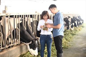 Nông dân tham gia chương trình của Cô Gái Hà Lan làm giàu trên mảnh đất quê hương