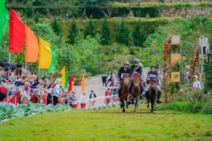 'Vó ngựa trên mây' - Trải nghiệm khó quên tại Sa Pa