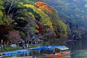 Chiêm ngưỡng cảnh sắc tuyệt đẹp ở công viên Arashiyama, Tokyo