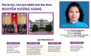 Bà Nguyễn Hương Giang được bầu giữ chức Chủ tịch UBND tỉnh Bắc Ninh