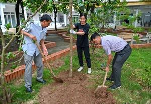 OMO khởi động Dự án trồng cây tạo màn chắn xanh cho Việt Nam