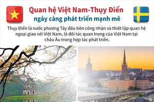 Quan hệ Việt Nam-Thụy Điển ngày càng phát triển mạnh mẽ