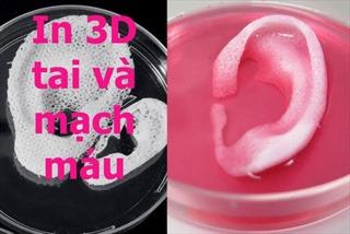 Khám phá phòng thí nghiệm in 3D bộ phận cơ thể người