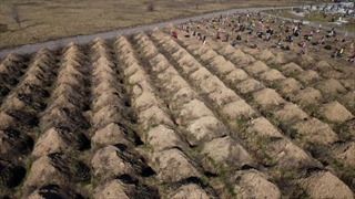 Hàng trăm ngôi mộ đào sẵn cho bệnh nhân COVID gây bất bình