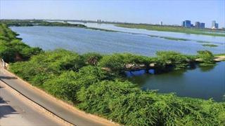 Sông thiêng ở Ấn Độ 'hồi sinh' giữa mùa đại dịch