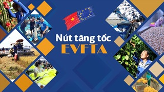 Nút tăng tốc EVFTA