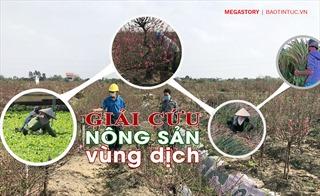 'Giải cứu' nông sản vùng dịch