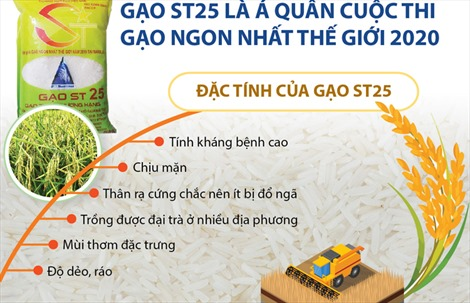 Gạo ST25 là Á quân cuộc thi Gạo ngon nhất thế giới 2020