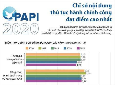 PAPI 2020: Chỉ số nội dung thủ tục hành chính công đạt điểm cao nhất