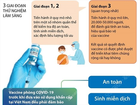 Vaccine COVID-19 được cấp phép sử dụng khẩn cấp đều qua 3 giai đoạn thử nghiệm lâm sàng