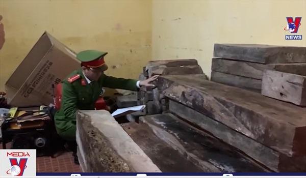 Phát hiện số lượng lớn gỗ quý không giấy tờ hợp pháp