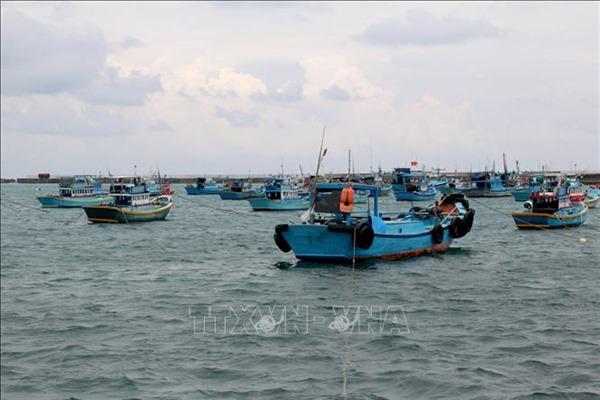 Chống khai thác IUU để phát triển bền vững nghề cá