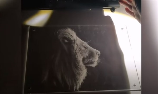 Vẽ tranh bằng... ánh sáng và bóng tối