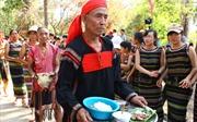 Lễ hội truyền thống các dân tộc Buôn Đôn-Hội Voi Đắk Lắk