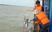 Tình yêu và trách nhiệm với đại dương