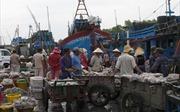 Gò Công Đông phát triển kinh tế biển