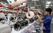 TPP sẽ tạo động lực lớn cho kinh tế Việt Nam