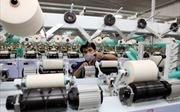 Dệt may không dễ nắm bắt cơ hội từ TPP