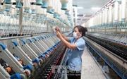 TPP sẽ giúp tăng kim ngạch xuất khẩu của Việt Nam lên 2 con số