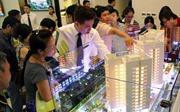 Thủ tướng yêu cầu báo cáo về thông tin doanh nghiệp bất động sản khốn khổ vì 'đất ở'