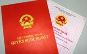 Gia Lai yêu cầu báo cáo kết quả thanh tra việc cấp 'sổ đỏ' trên đất lâm nghiệp