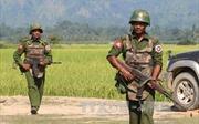 Myanmar tạm ngừng hành động quân sự chống các nhóm vũ trang