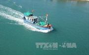 Ngăn chặn tình trạng tàu cá vi phạm vùng biển nước ngoài