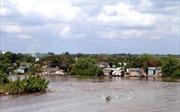 Biến đổi khí hậu 'bủa vây' vùng bán đảo Cà Mau - Bài 1: Sống nơi đầu sóng