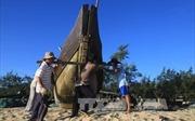 Thừa Thiên - Huế cơ bản hoàn thành bồi thường sự cố môi trường biển
