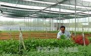'Tri thức hóa' cho nông dân, đáp ứng tiêu chuẩn làm việc của môi trường cạnh tranh quốc tế