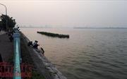 Hà Nội: Thông tin hàng tấn cá chết trắng xóa hồ Tây là chưa chính xác