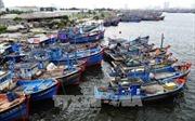 Dừng dự án đầu tư xây dựng tuyến luồng Thọ Quang, Đà Nẵng