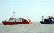 Tàu cá với 10 ngư dân bị chìm trên vùng biển tỉnh Bà Rịa - Vũng Tàu